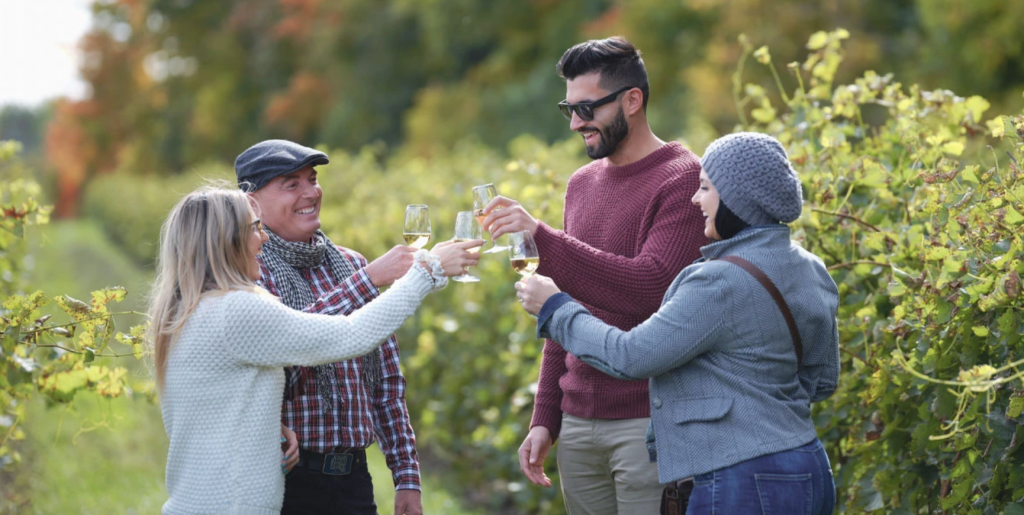 Friends cheering their wine glasses at Vignoble Coteau Rougemont near Montreal.