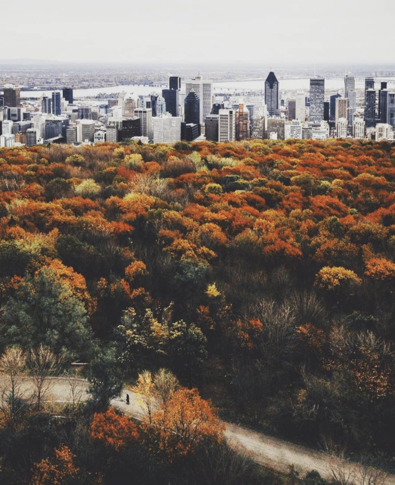 Montreal : Mount Royal