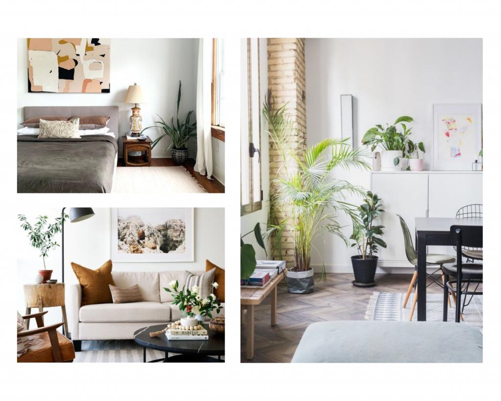 thérapie d'appartement